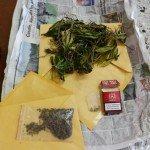 Marijuana Valenza 1