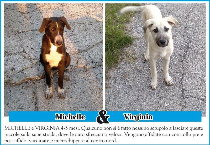 michelle-virginia