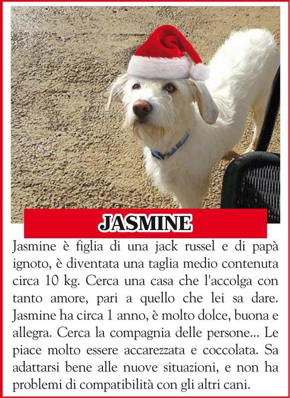 ANIMALANDO-JASMINE