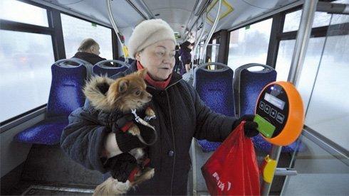 tallin-bus-gratis