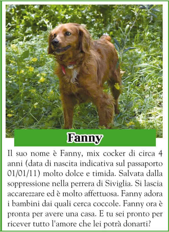 ANIMALANDO-FANNY