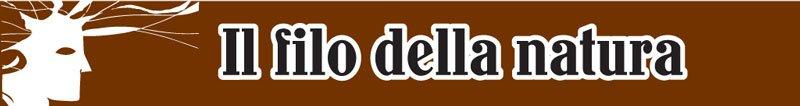 LE-RADICI-DEL-CIELO-PERCORSO-MARRONE-TITOLO