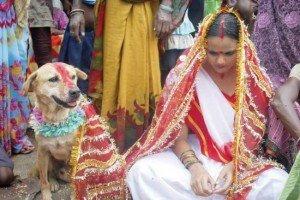 Matrimonio-con-cane