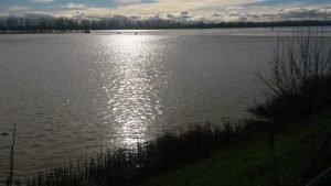 Campi dell'acquese trasformati in laghi